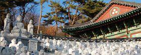Universités en Corée du Sud